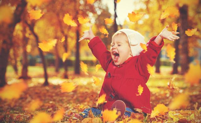 Як зробити гарні фото восени – поради запоріжцям