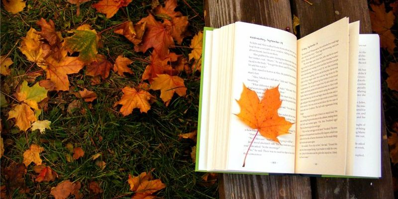 autumn-book