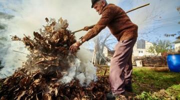 Чому не можна спалювати опале листя