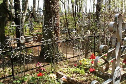 Капустяное кладбище