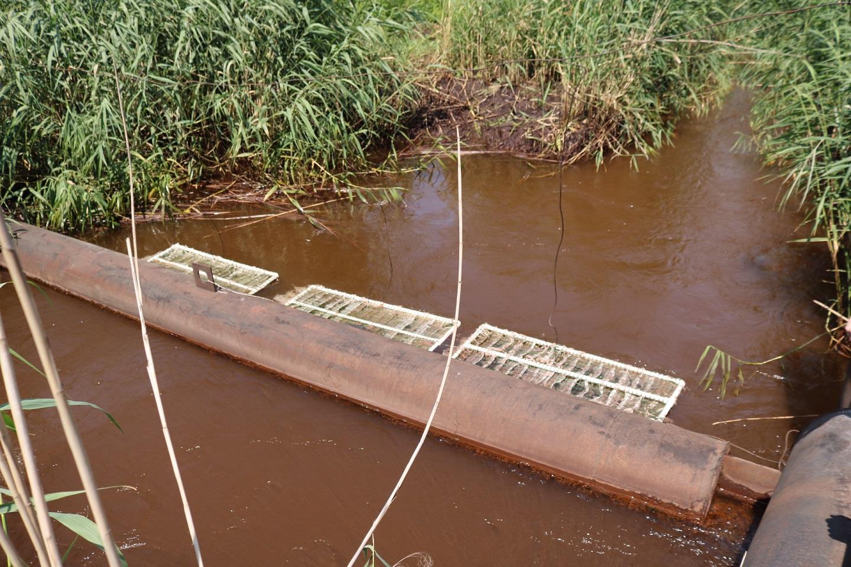 Плоты с колониями микроорганизмов осуществляют дополнительную очистку нейтрализованных на предприятии промышленных стоков