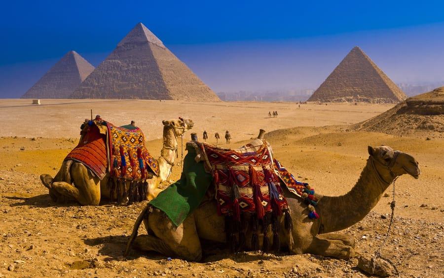 23 Египет