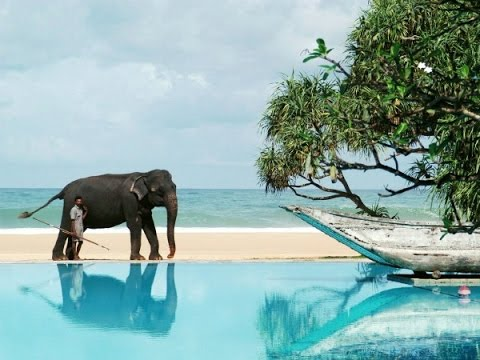 23 Шри Ланка