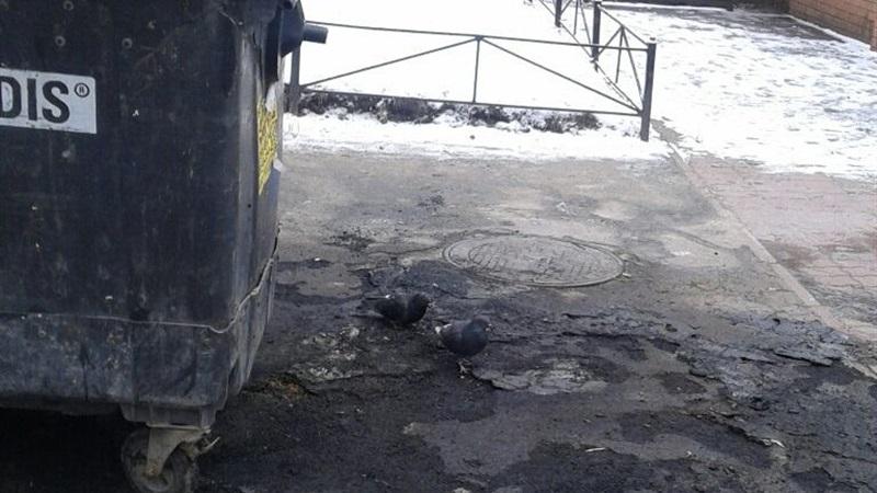 спалили сміттєві баки