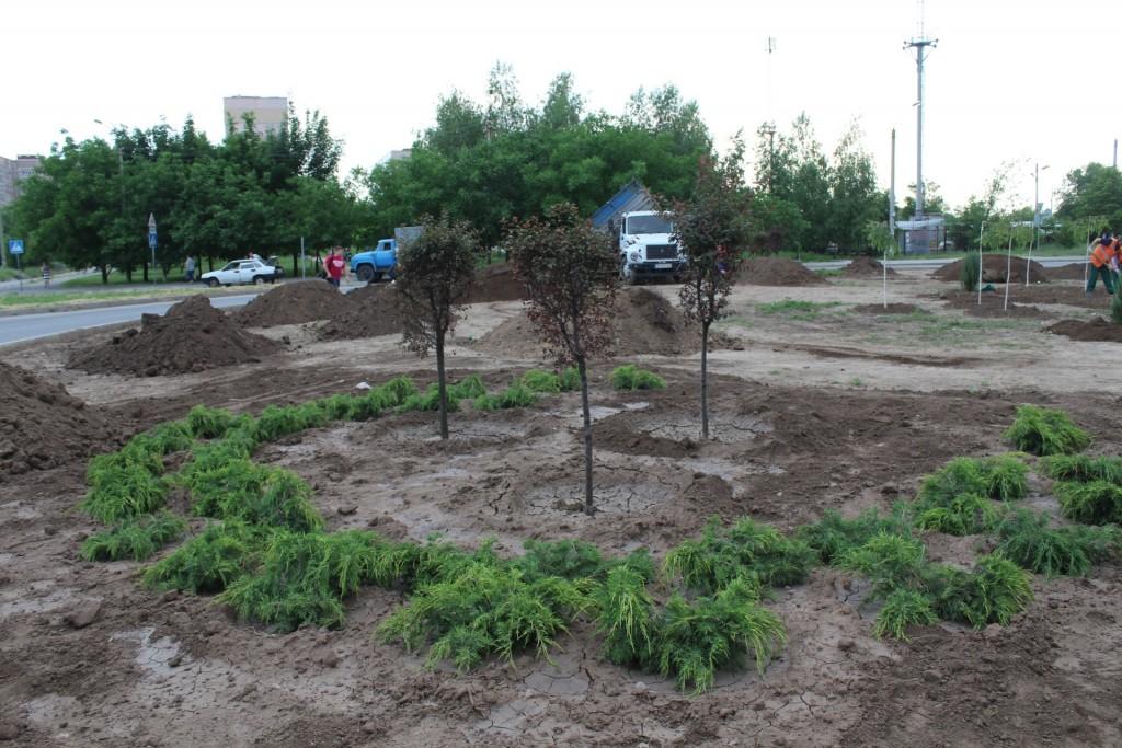 деревья2