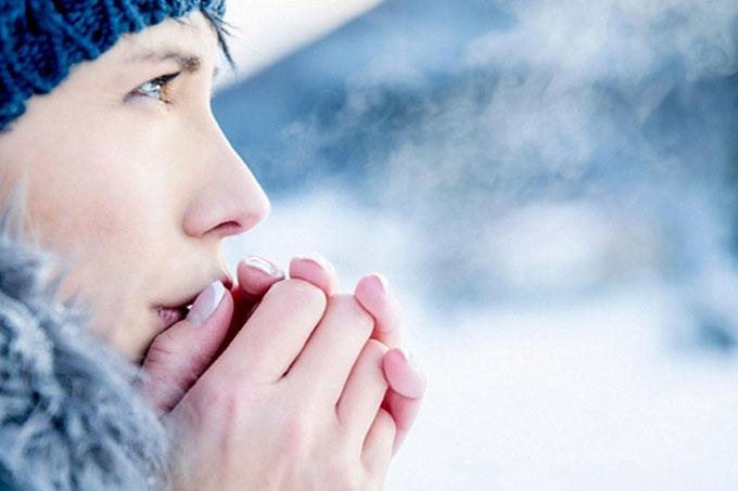 Як пережити перші заморозки у Запоріжжі