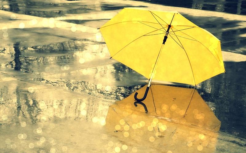 Обираємо парасольку – 7 головних критеріїв