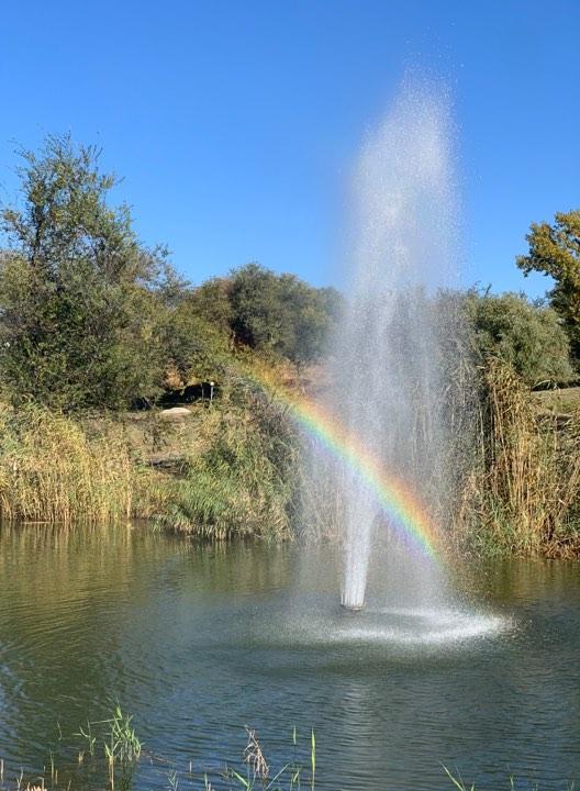 Райдуга на «Райдузі»: небо у Запоріжжі засяяло різнокольоровими барвами