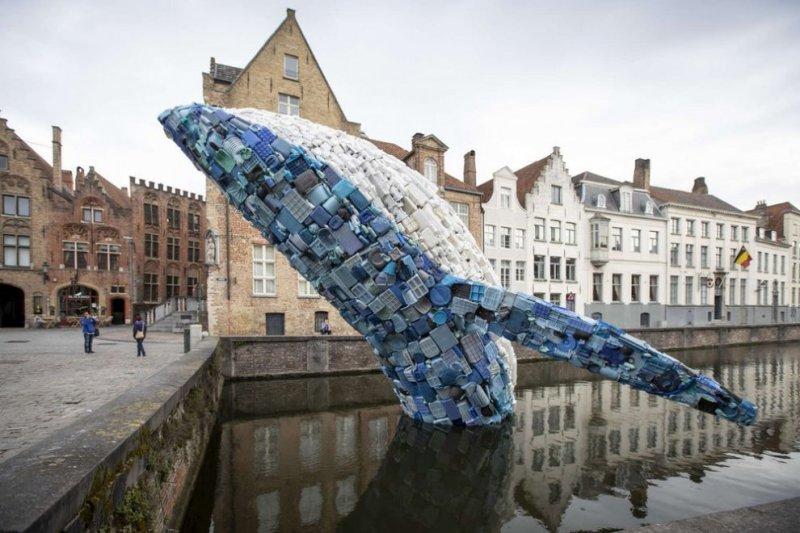 Пластиковий кит у Бельг│┐