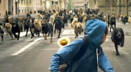 Нападение-собак-на-людей-300x169
