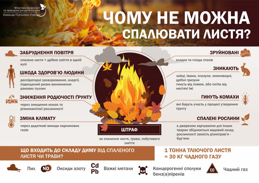 інфографіки_спалювання листя_2