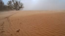 Південь перетворюється в пустелю