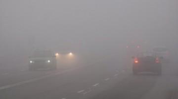 2d41b48-fog