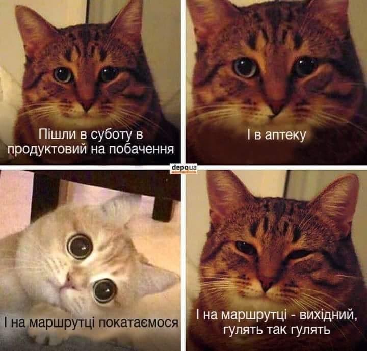 Ковiд_теж_пiдбавив_мотивацii_створювачам_мемiв