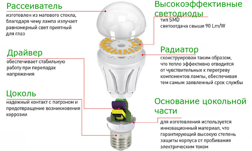 Свiтлодiодна_лампа_в_розрiзi