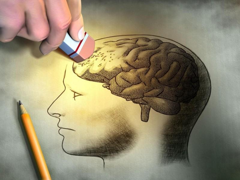 мозок3