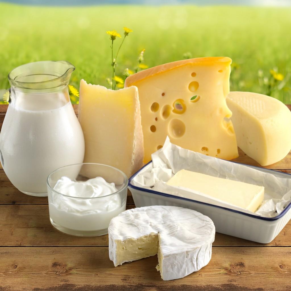moloko-maslo-smetana-syr